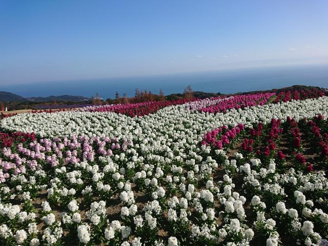 淡路島のおすすめ絶景穴場スポット3選をご紹介。
